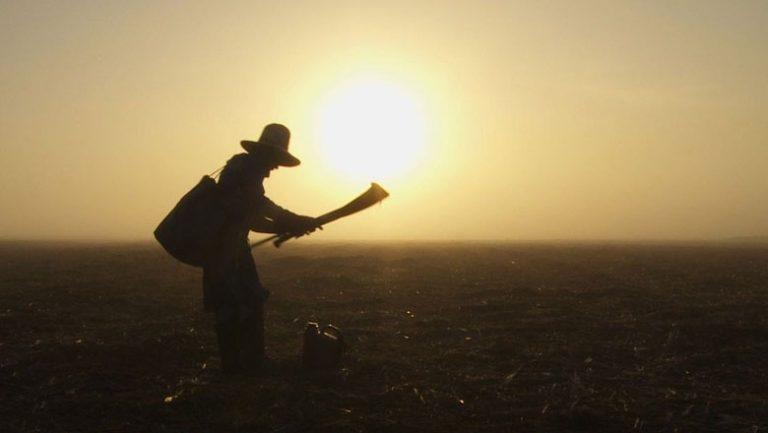 Êxodo Rural - Consequências e História