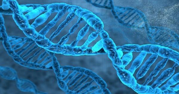 Genética - Origem